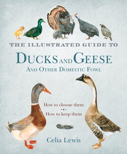 Celia Lewis The Illustrated Guide To Ducks And Geese And Other How To Choose Them How To Keep Them