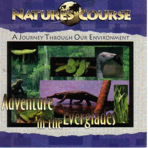 Nature's Course Adventure In The Everglades