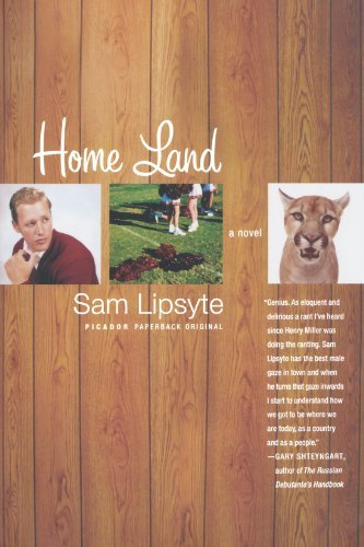 Sam Lipsyte Home Land