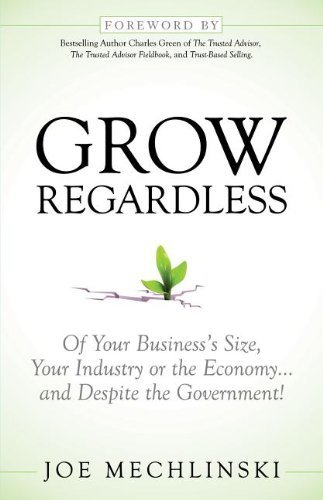 Joe Mechlinski Grow Regardless Of Your Business' Size Your Industry Or The Econ