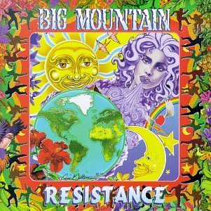 Big Mountain Resistance
