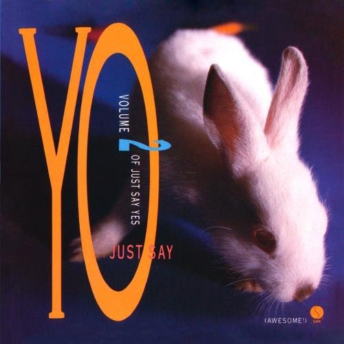 Just Say Yo Just Say Yo CD R Morrissey Erasure Wild Swans