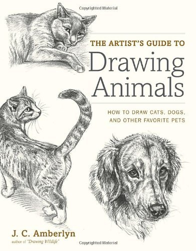 J. C. Amberlyn The Artist's Guide To Drawing Animals How To Draw Cats Dogs And Other Favorite Pets