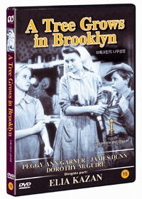 Tree Grows In Brooklyn (1945) Kazan Mcguire Import Kor