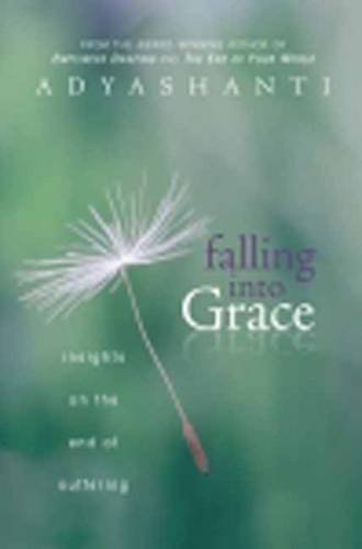 Adyashanti Falling Into Grace Insights On The End Of Suffering