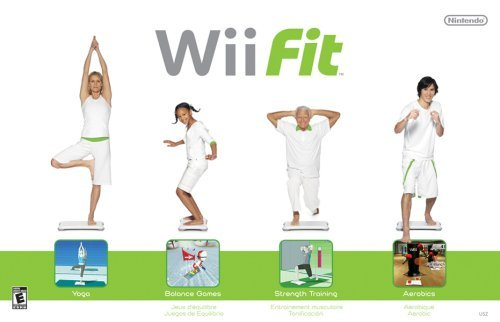 Wii Wii Fit (game Only)