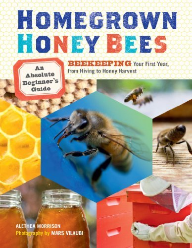 Alethea Morrison Homegrown Honey Bees An Absolute Beginner's Guide To Beekeeping Your F