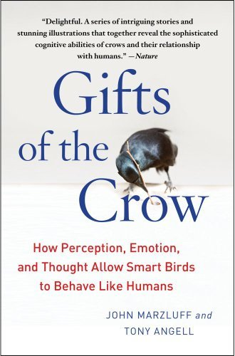 John Marzluff Gifts Of The Crow How Perception Emotion And Thought Allow Smart