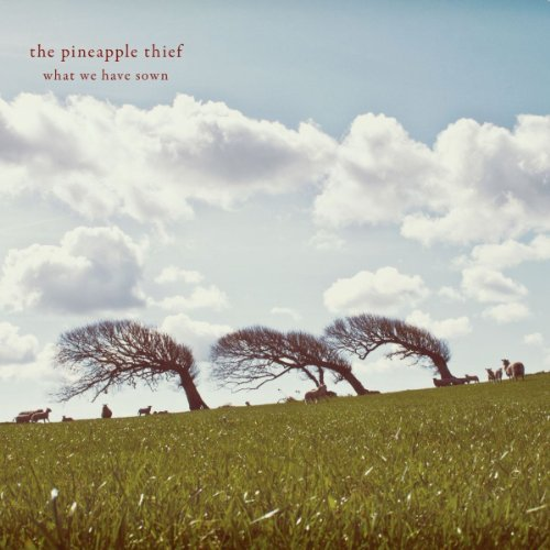 Pineapple Thief What We Have Sown