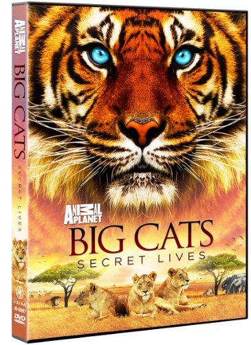 Big Cats Secret Lives Big Cats Secret Lives Tvpg