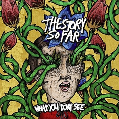 Story So Far What You Don't See