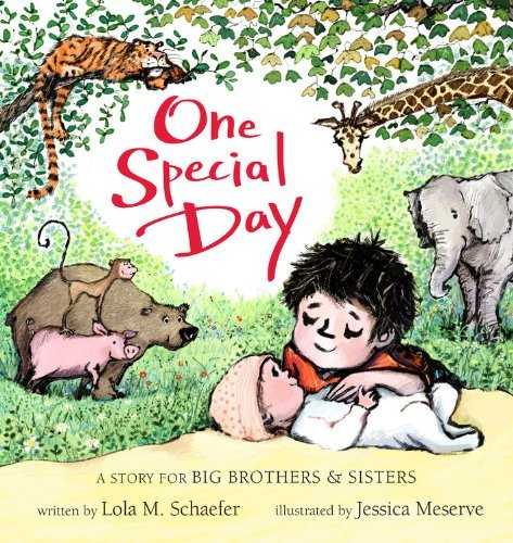 Lola M. Schaefer One Special Day A Story For Big Brothers & Sisters