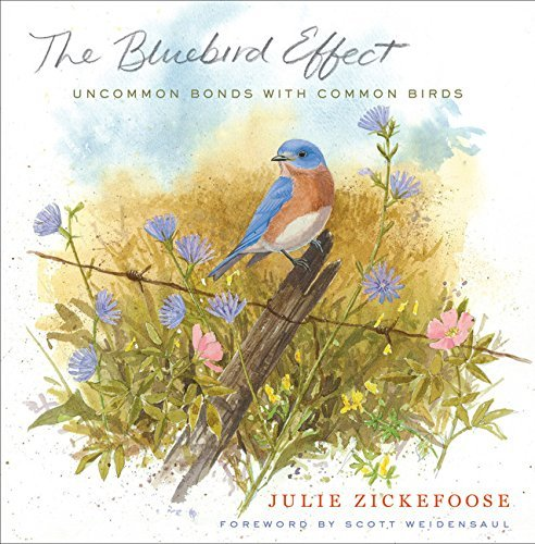 Julie Zickefoose The Bluebird Effect Uncommon Bonds With Common Birds