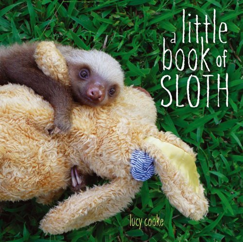 Lucy Cooke Little Book Of Sloth