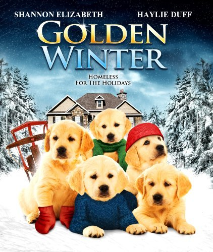 Golden Winter Elizabeth Duff Brooks Blu Ray Ws Nr