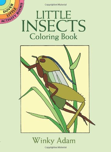 Winky Adam Little Insects Coloring Book