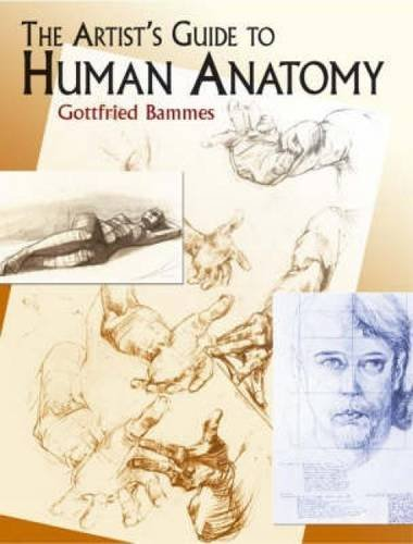 Gottfried Bammes Artist's Guide To Human Anatomy The