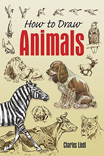 Charles Liedl How To Draw Animals