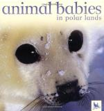 Jennifer Schofield Animal Babies In Polar Lands