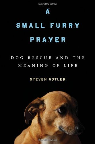 Steven Kotler A Small Furry Prayer Dog Rescue And The Meaning Of Life