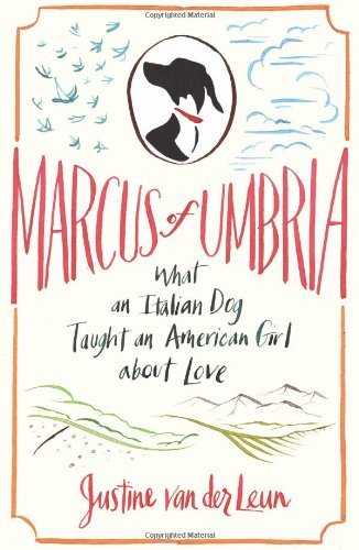 Justine Van Der Leun Marcus Of Umbria What An Italian Dog Taught An American Girl About
