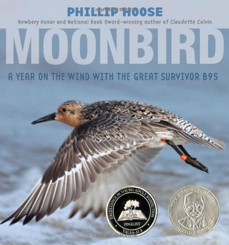 Phillip Hoose Moonbird A Year On The Wind With The Great Survivor B95