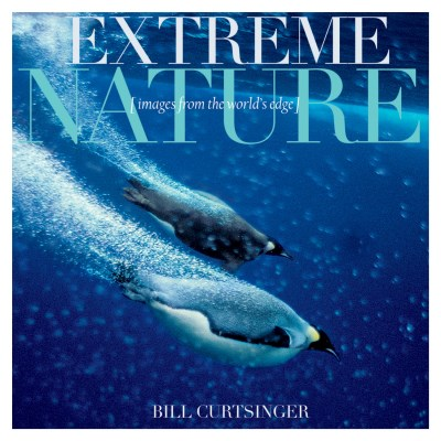 Bill Curtsinger Extreme Nature Images From The World's Edge