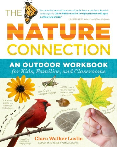 Clare Walker Leslie The Nature Connection An Outdoor Workbook For Kids Families And Class