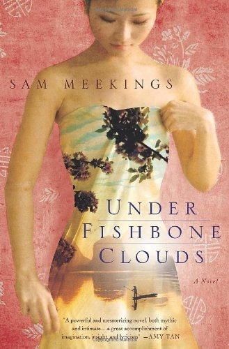 Sam Meekings Under Fishbone Clouds
