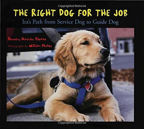 Dorothy Hinshaw Patent The Right Dog For The Job Ira's Path From Service Dog To Guide Dog