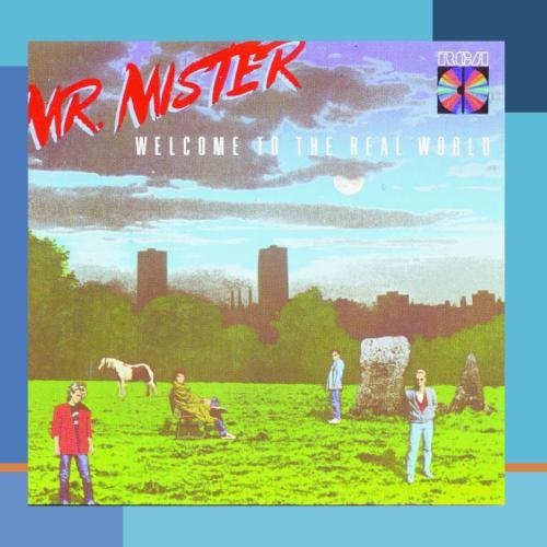 Mr. Mister Welcome To The Real World This Item Is Made On Demand Could Take 2 3 Weeks For Delivery
