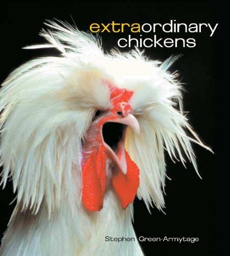 Stephen Green Armytage Extraordinary Chickens