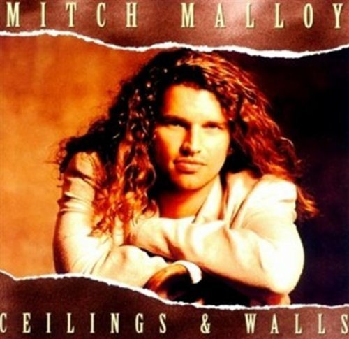 Mitch Malloy Ceilings & Walls