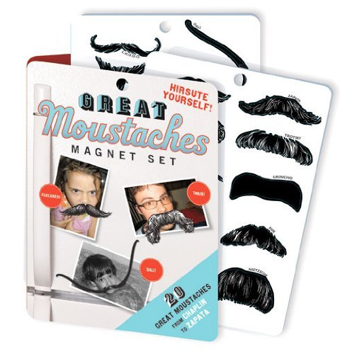 Dress Up Moustaches