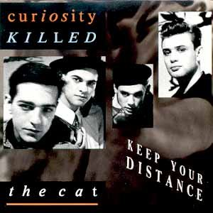 Curiosity Killed The Cat Keep Your Distance
