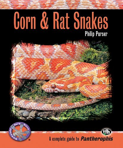 Phillip Purser Corn & Rat Snakes A Complete Guide To Pantherophis