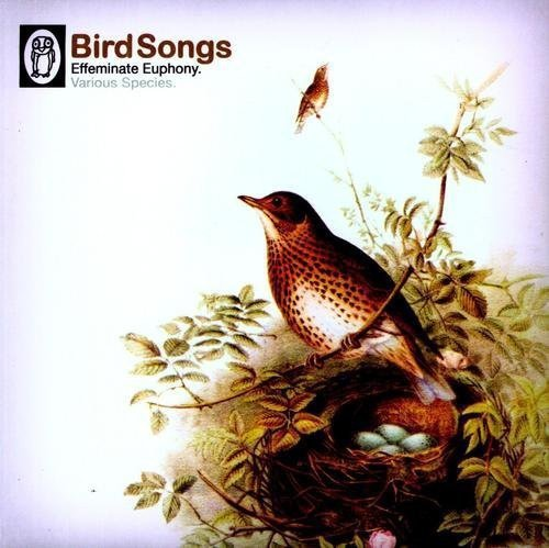 B Music Bird Songs 10 Inch Vinyl