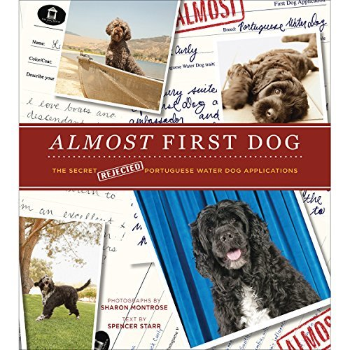 Sharon Montrose Almost First Dog The Secret Rejected Portuguese Water Dog Applicat