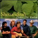 Shenandoah Under The Kudzu
