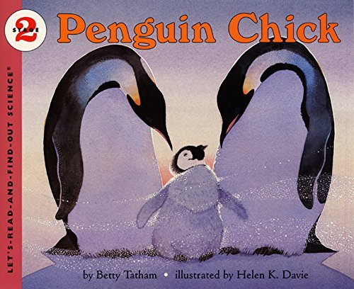 Betty Tatham Penguin Chick