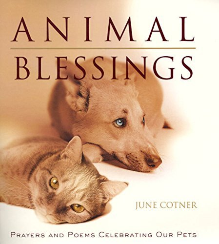 June Cotner Animal Blessings Prayers And Poems Celebrating Our Pets