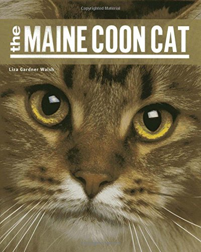 Liza Gardner Walsh The Maine Coon Cat