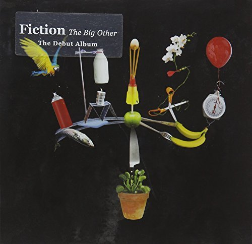 Fiction Big Other