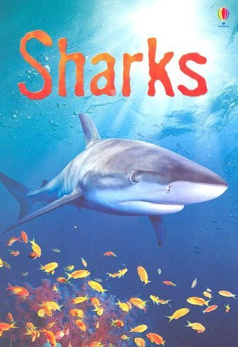 Catriona Clarke Sharks Information For Young Readers Level 1