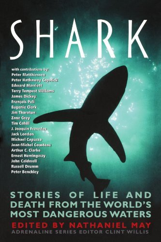 Nathaniel May Shark Stories Of Life And Death From The World's Most D