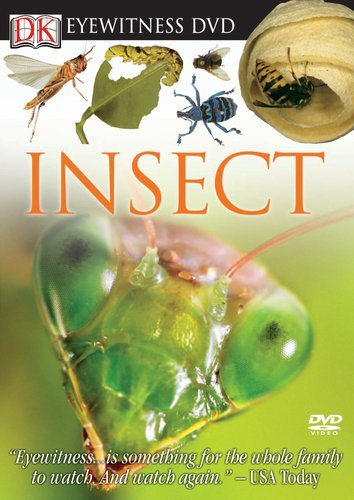 Insect Eyewitness Nr Ntsc(1)