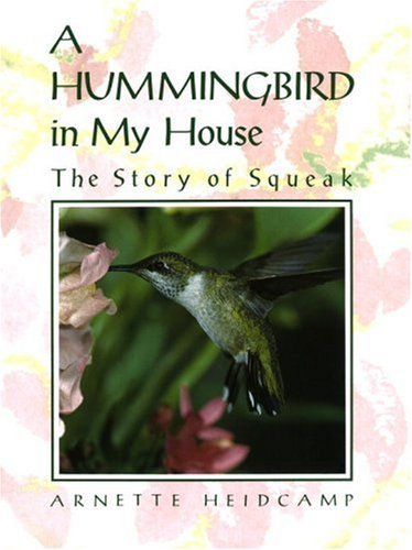 Arnette Heidcamp A Hummingbird In My House The Story Of Squeak