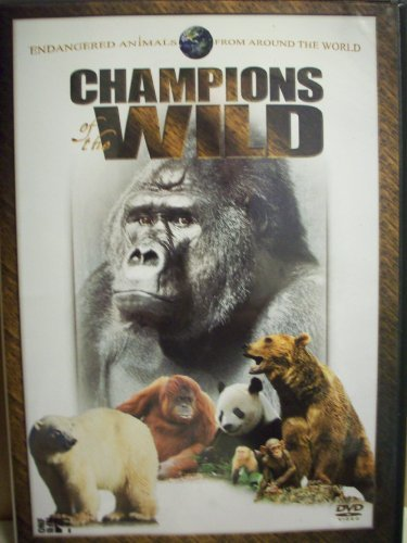 Champions Of The Wild Endangered Animals From Around The World