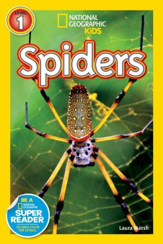 Laura F. Marsh Spiders