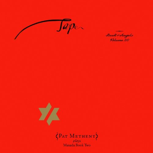 Pat Metheny Vol. 20 Tap John Zorn's Book